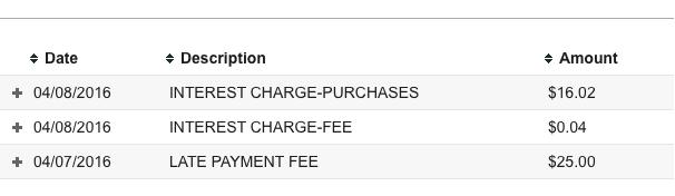 td cash interest charges
